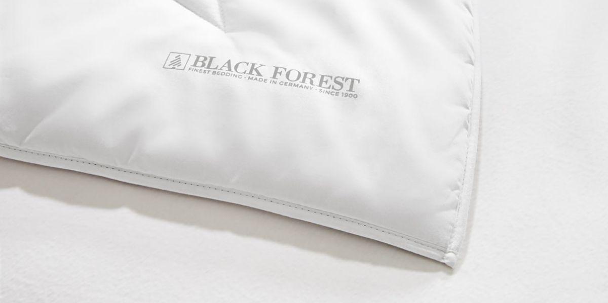OBB-Black-Forest-Eckverarbeitung_1210px