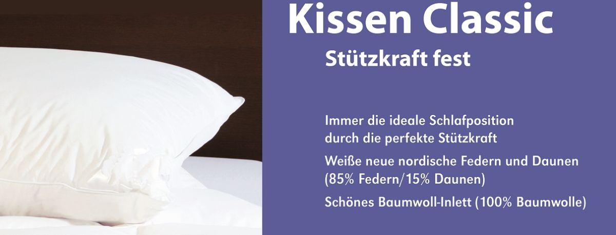 RZ_Einschieber-CS_extra_FD_Kissen-Classic_1210