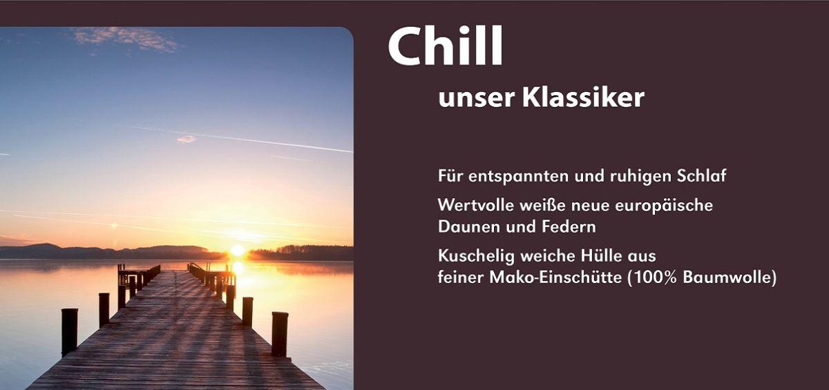 RZ_Einschieber_Chill_CS_extra_1210